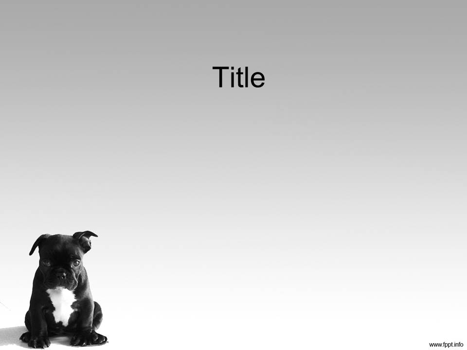 Дизайн для powerpoint собаки